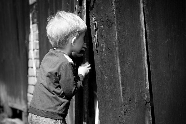 curiosity trumps fear